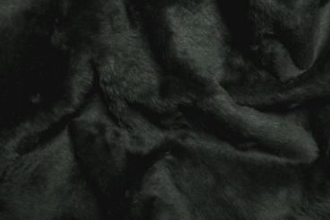 Anthrazit