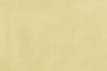 Vanille - TwoTone