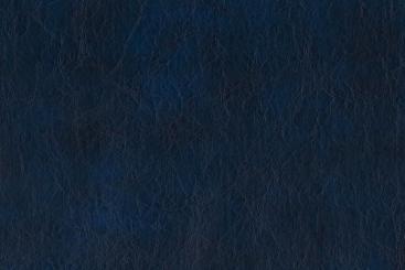 Blau - TwoTone
