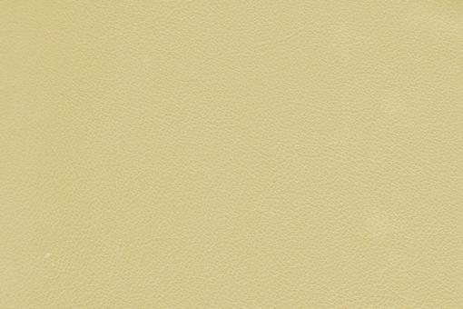 Echtleder - Two Colour - Sacramento Champagner