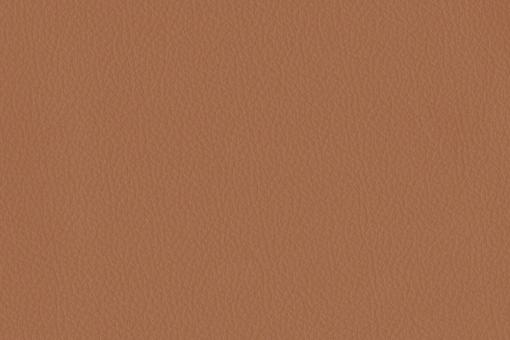 Echtleder - Two Colour - Nevada Kamelbraun