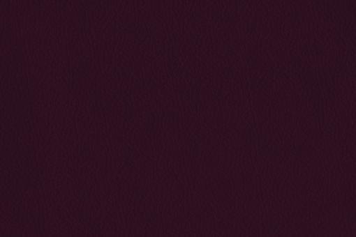 Echtleder - Two Colour - Nevada Brombeer