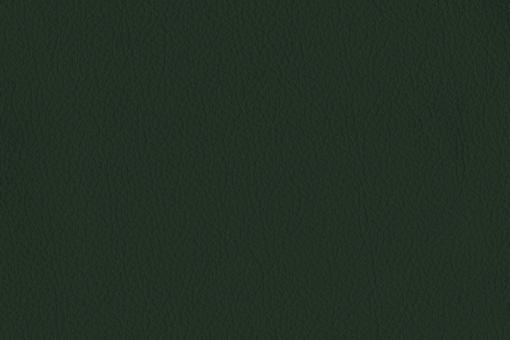 Echtleder - Two Colour - Nevada Tanne