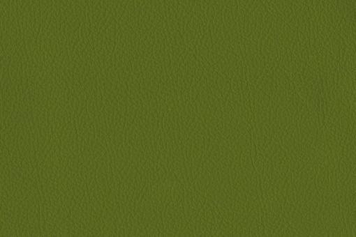 Echtleder - Softtouch - Texas Grün