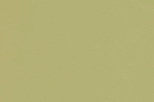 Echtleder - Soft - Cheyenne Lindgrün