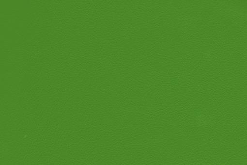 Echtleder - Soft - Cheyenne Hellgrün
