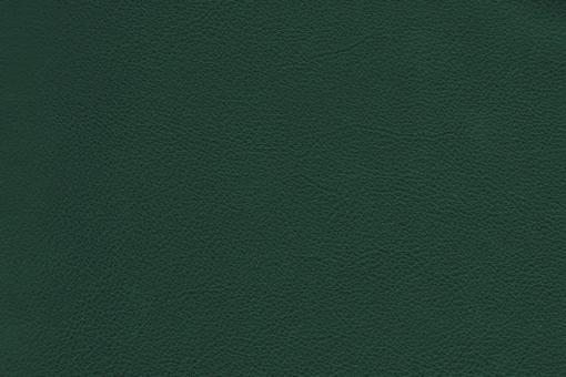 Echtleder - Soft - Cheyenne Flaschengrün