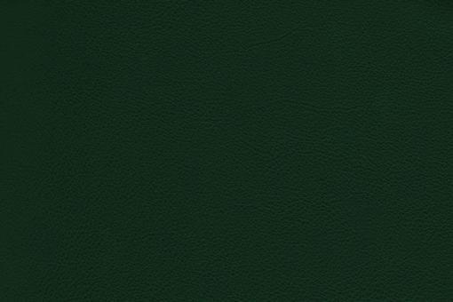 Echtleder - Soft - Cheyenne Tanne