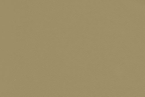 Echtleder - Soft - Cheyenne Beigegrün