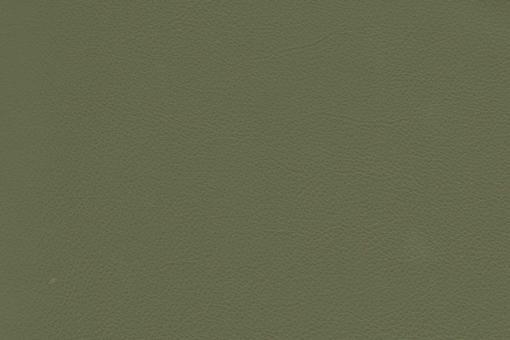 Echtleder - Soft - Cheyenne Schilfgrün