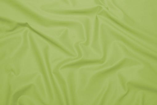 Baumwoll-Canvas - Basic Lindgrün