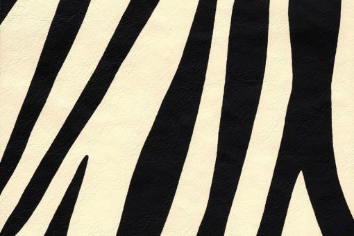 Echtleder - Zebra-Muster Creme/Schwarz