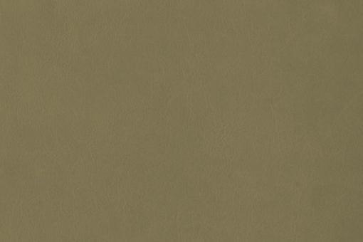 Echtleder - Softtouch - Louisiana Grünbeige
