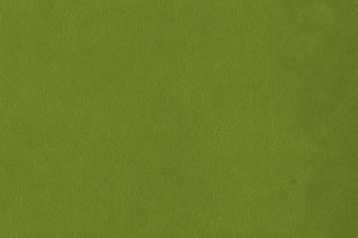 Echtleder - Softtouch - Louisiana Hellgrün