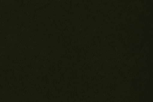 Echtleder - Softtouch - Louisiana Dunkelgrün