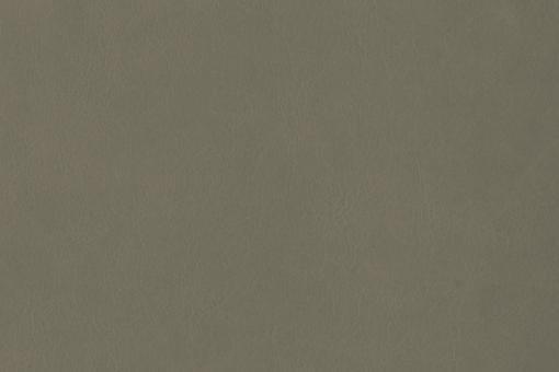 Echtleder - Softtouch - Louisiana Hellgrau