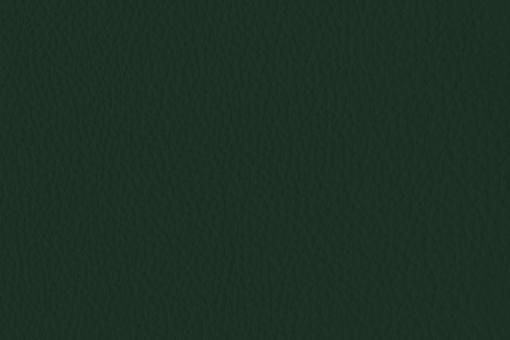 Echtleder - Two Colour - Denver Tanne