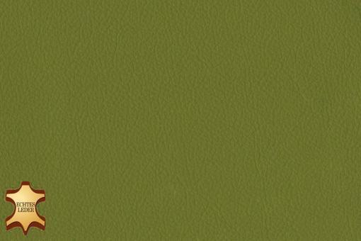 Echtleder - Softtouch - Texas Hellgrün