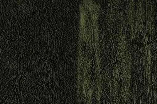 Echtleder - Chesterfield-Effekt Grün