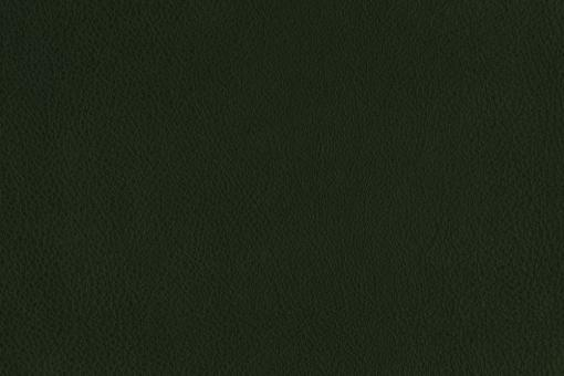 Echtleder - Country-Style Dunkelgrün