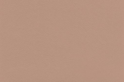 Echtes Nappaleder - No. 4 Beige-Rot