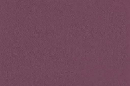 Echtes Nappaleder - No. 4 Violett