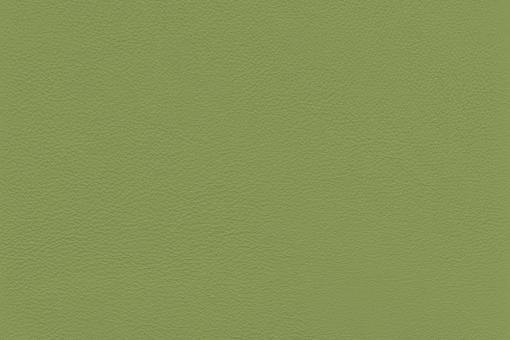 Echtes Nappaleder - No. 4 Lindgrün