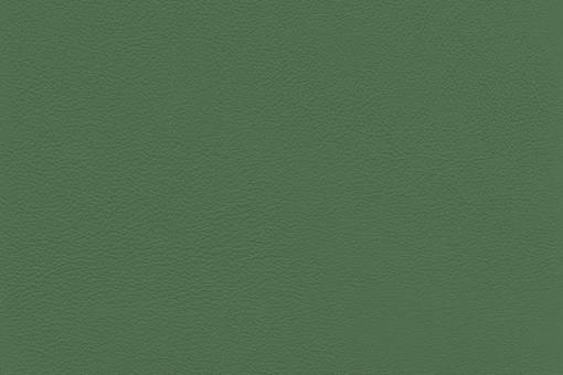 Echtes Nappaleder - No. 4 Grün