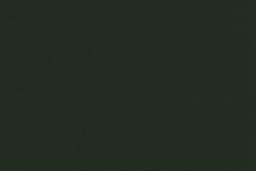Echtes Nappaleder - No. 4 Dunkelgrün