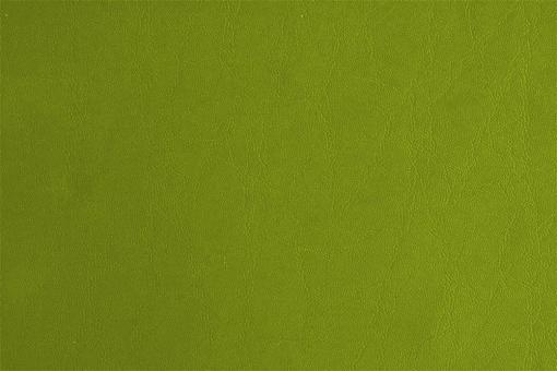 Leder-Imitat Waterproof - Elefant Hellgrün