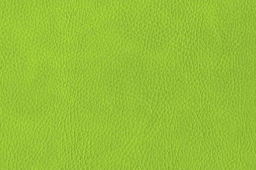 skai® Sotega - Dickleder-Imitat Hellgrün