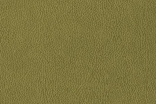 skai® Sotega - Dickleder-Imitat Oliv