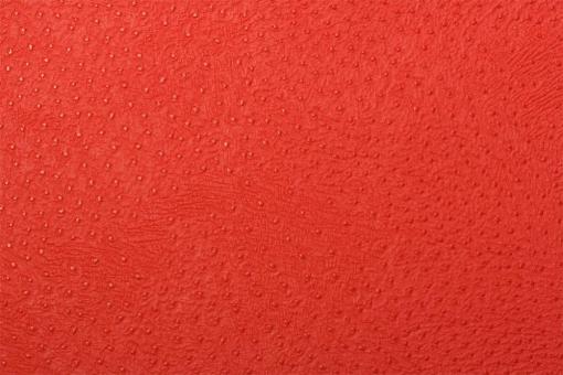 Leder-Imitat Waterproof - Baby-Strauß Rot