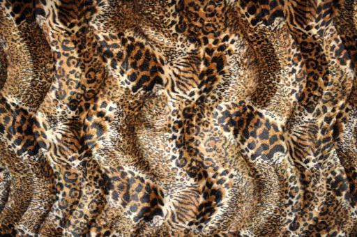 Kurzhaar-Fellimitat - Tiere Wildkatzenmix