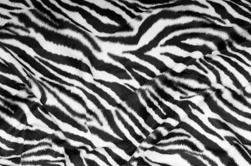 Kurzhaar-Fellimitat - Tiere Zebra