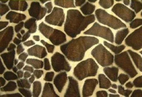 Kurzhaar-Fellimitat - Tiere Giraffe