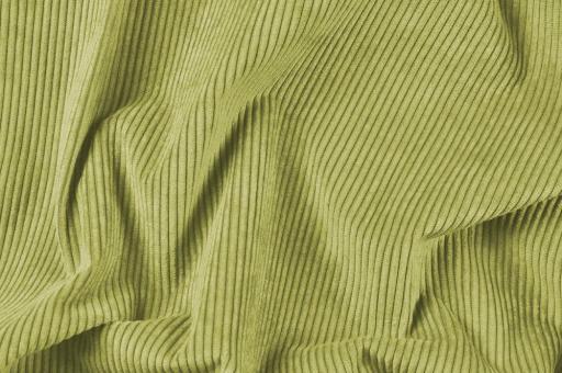 Möbelstoff Cord-Samt - Longlife Hellgrün